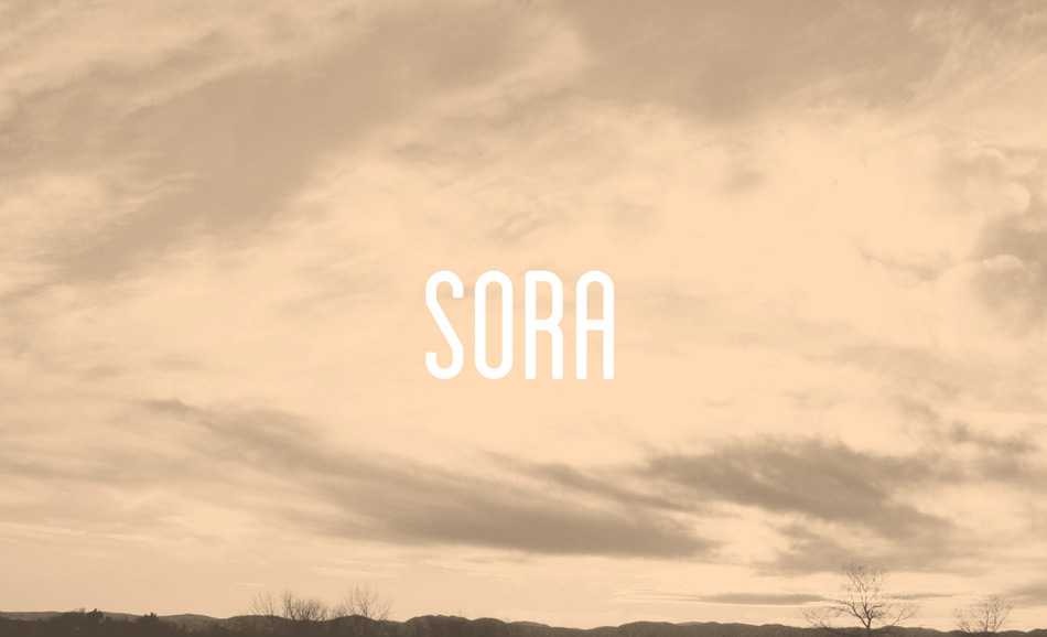 Sora Energy Brand Identity