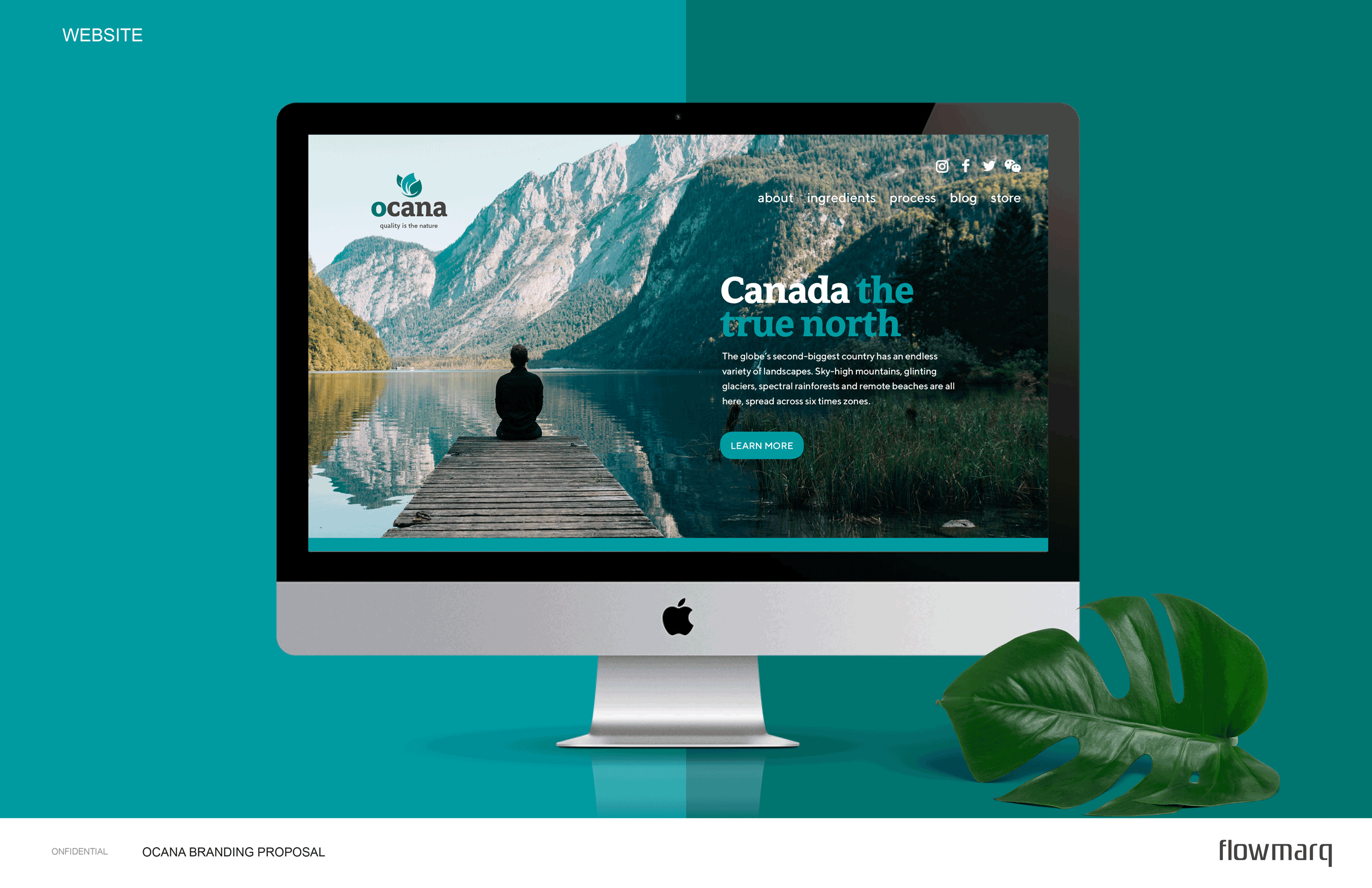 Ocana - Website Design