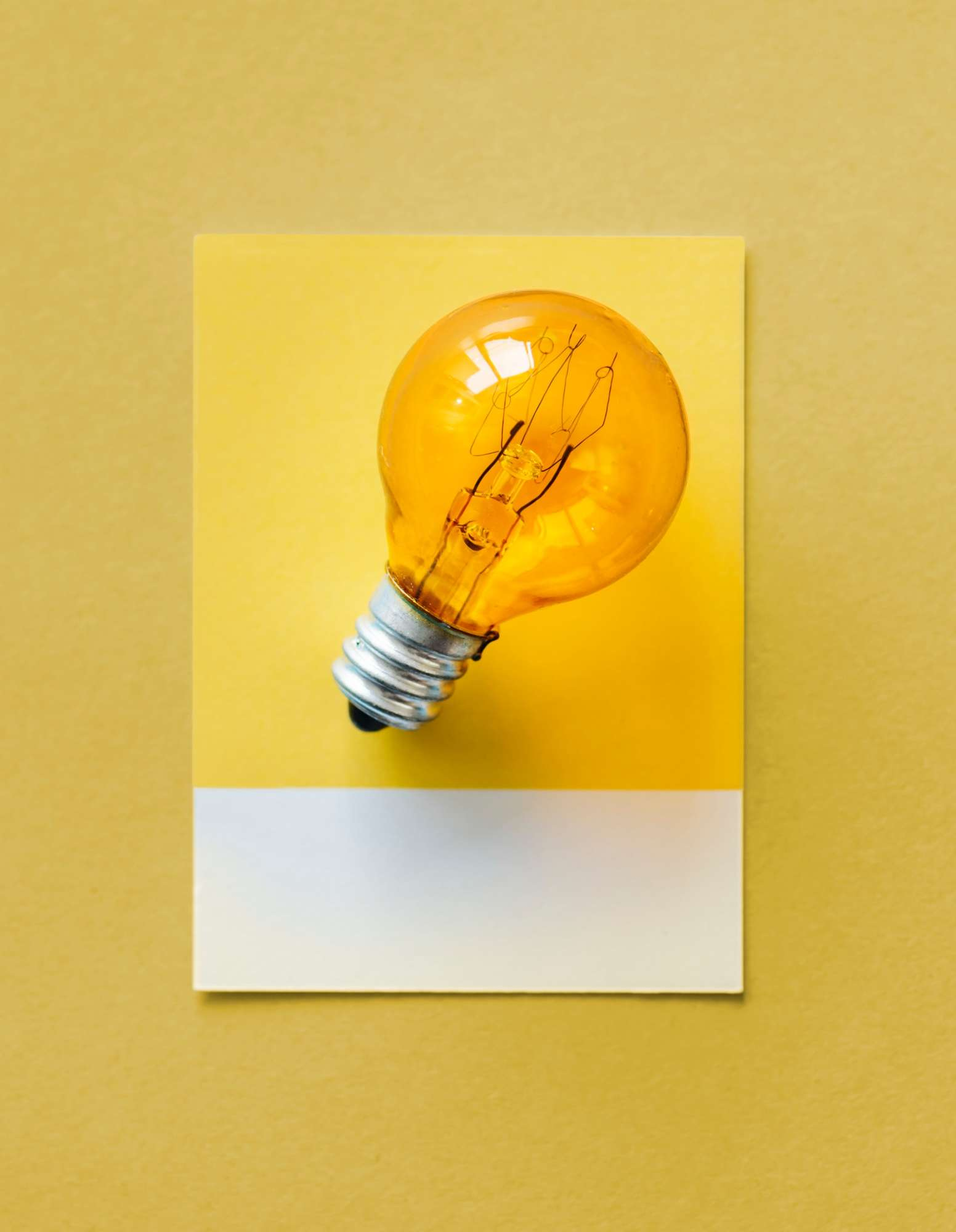 bulb-card-close-up-1083626